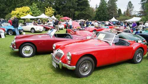 British Cars in a Row