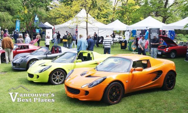 Lotus Car Display