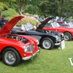 VanDusen British Cars