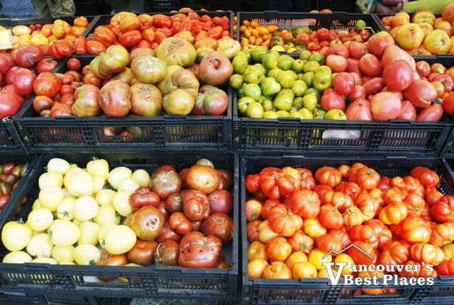 Farm Tomatoes at the Market