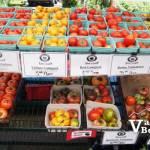 Trout Lake Market Tomatoes