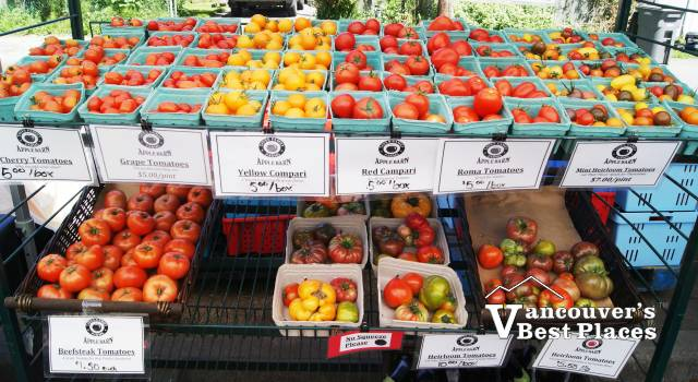 Farmers Market Peppers and Tomatoes