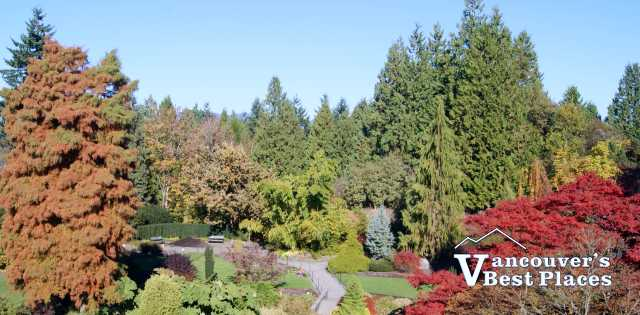 Queen Elizabeth Park in Fall