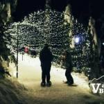 Grouse Light Walk Silhouettes