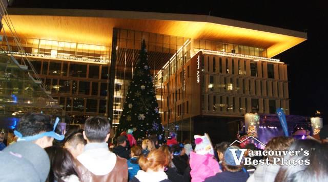 Surrey Christmas Tree Lighting Festival