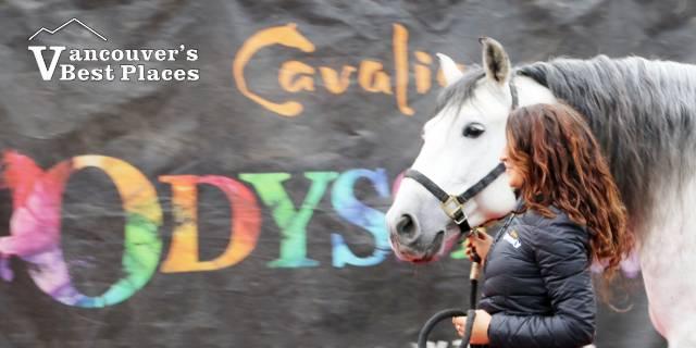 Horse, Trainer and Cavalia Sign