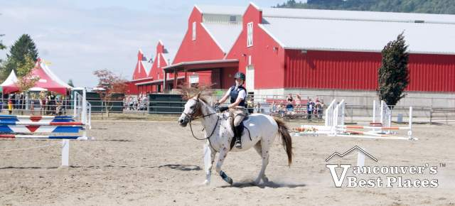 Horse Competition at Chilliwack Fair