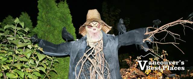 Haunted Edgemont Scarecrow