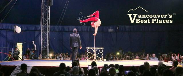 Circus Acrobatic Contortionist