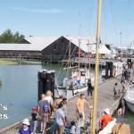 Steveston Docks at Maritime Festival