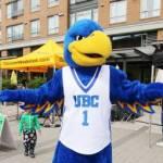 UBC Thunderbirds Mascot at Wesbrook Village