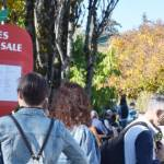 Apple Trees for Sale at UBC Botanical Garden (CS)