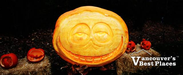 Glow in the Garden Pumpkin Face