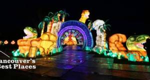 Art of Lights Lantern Festival