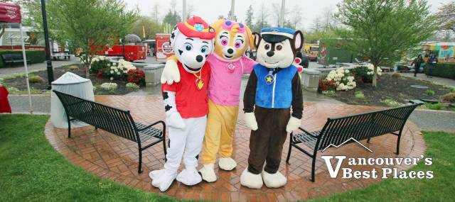 Paw Patrol in Abbotsford