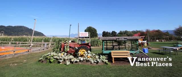 Chilliwack Corn Maze and Pumpkin Farm