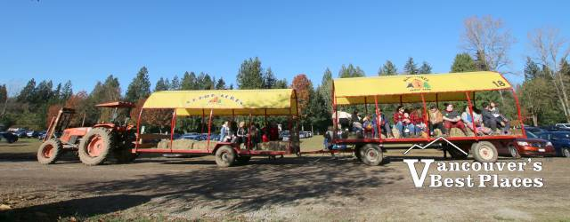 Aldor Acres Wagon Rides