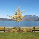 Vancouver Autumn Activities