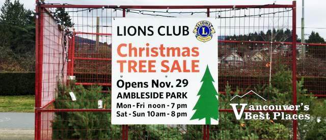 Lions Club Ambleside Xmas Tree Sale