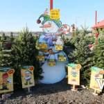 Oh Merry Christmas Tree Farm