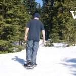 Snowshoeing at Cypress Mountain