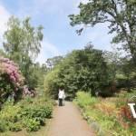 Glades Garden Park in Surrey