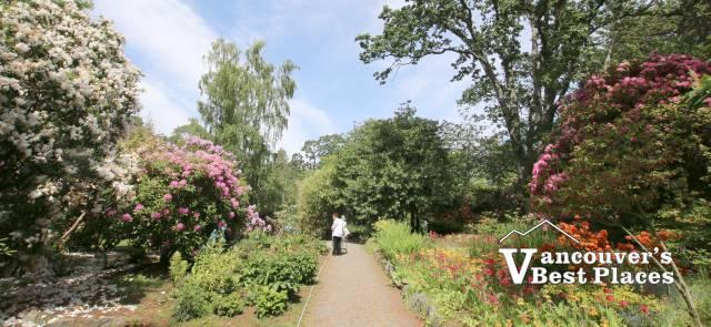 Glades Garden in Surrey