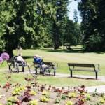Central Park Golf Course and Garden