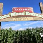 Maan Farms Corn Maze Entrance