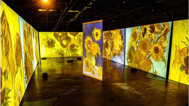 Van Gogh Sunflowers Displays