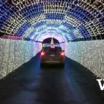 Glow Christmas Drive-Thru Light Tunnel