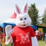 Easter Bunny at Maan Farm