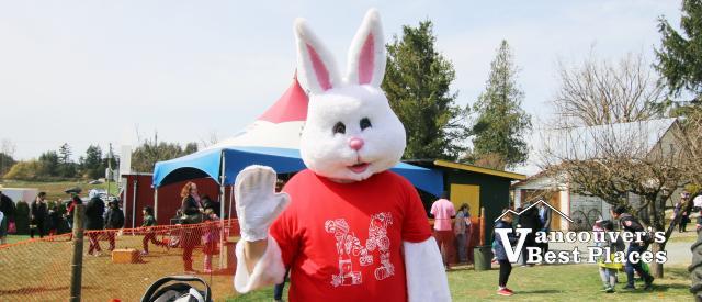 Easter at Maan Farm