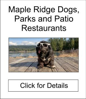 Maple Ridge, Dogs, Parks and Patio Restaurants