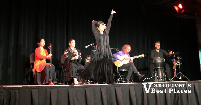 Flamenco Rosario Dance Performance