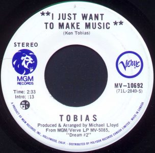 I Just Want To Make Music by Tobias