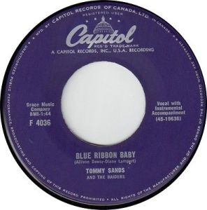 Blue Ribbon Baby by Tommy Sands And The Raiders