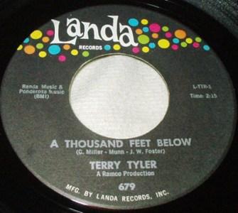 A Thousand Feet Below by Terry Tyler