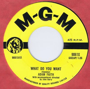 What Do You Want by Adam Faith