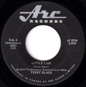 Little Liar by Terry Black