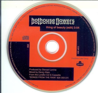 Thing Of Beauty by Hothouse Flowers