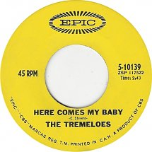 Here Comes My Baby by the Tremeloes
