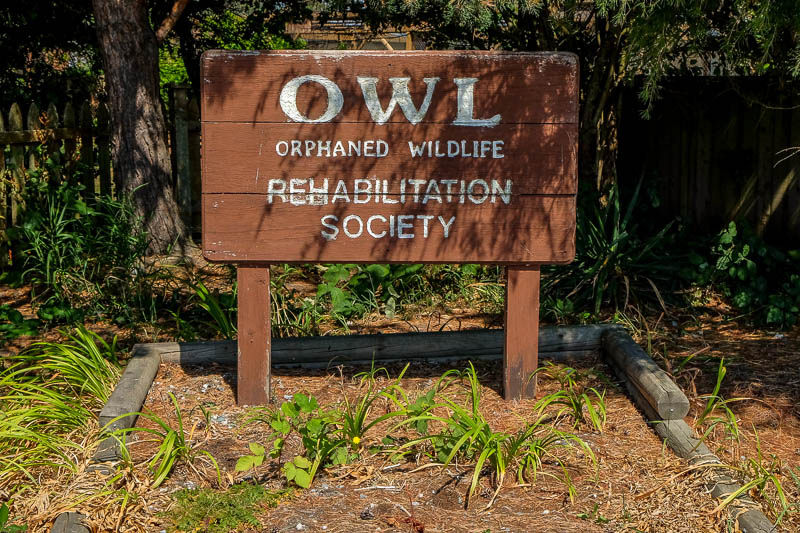 OWL - Orphaned Wildlife Rehabilitation Society