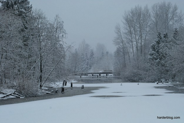 First Snowfall (3)