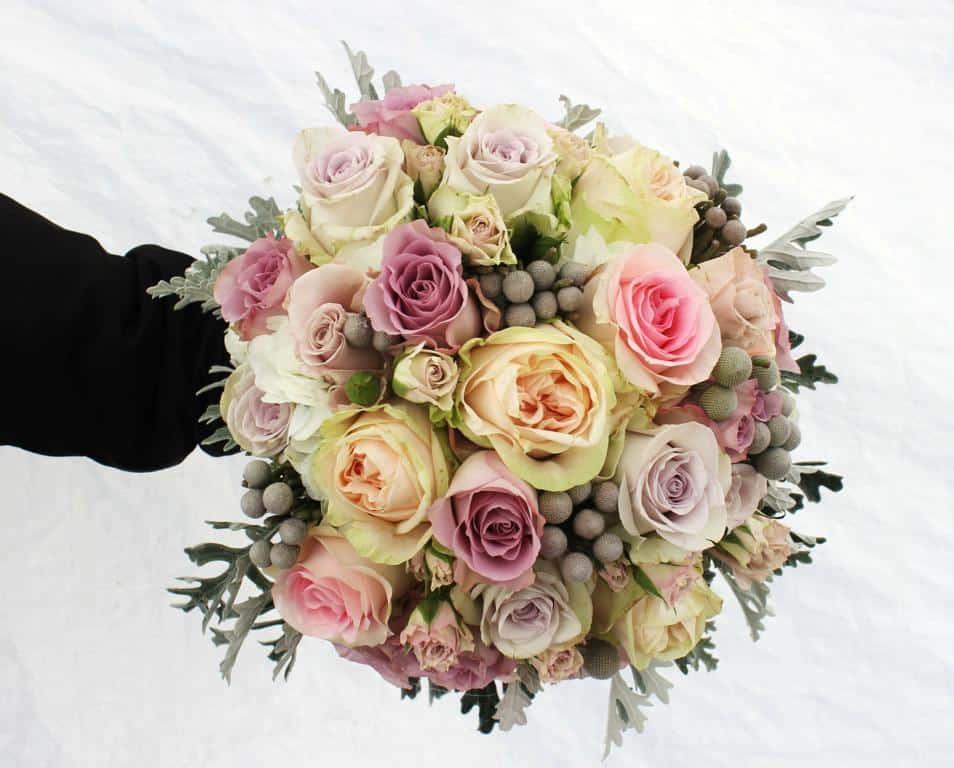 Blumen F Blumen Fr Garten Liebenswert Best Garten Images