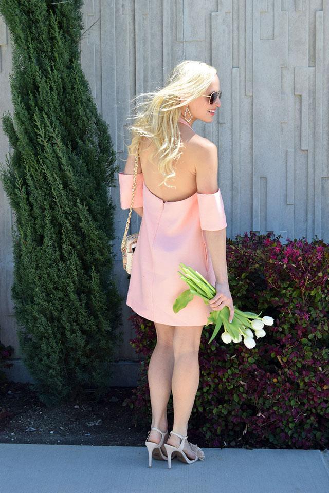 cmeo halter dress