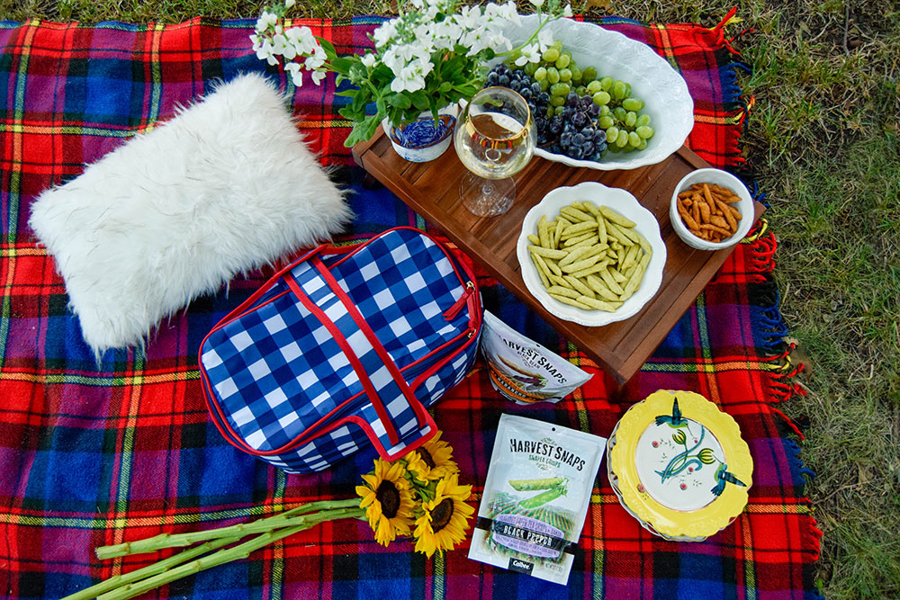 vandi-fair-dallas-fashion-blog-lauren-vandiver-southern-texas-lifestyle-fitness-blogger-healthy-snacking-snacks-harvest-snaps-snap-pea-crisps-picnic-1