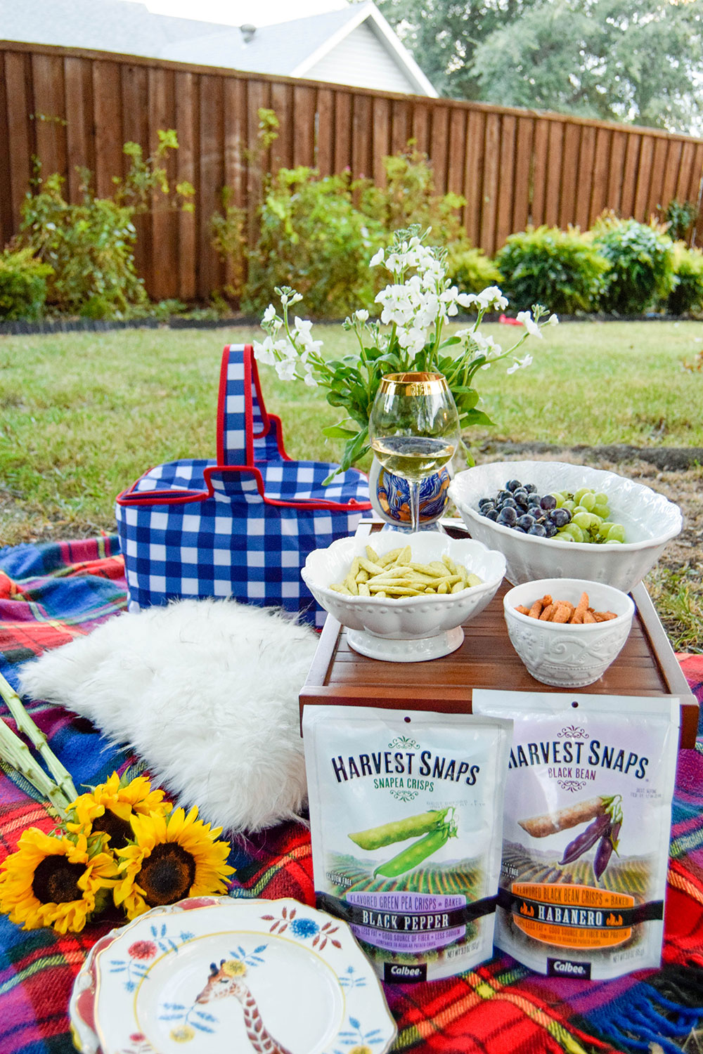 vandi-fair-dallas-fashion-blog-lauren-vandiver-southern-texas-lifestyle-fitness-blogger-healthy-snacking-snacks-harvest-snaps-snap-pea-crisps-picnic-5