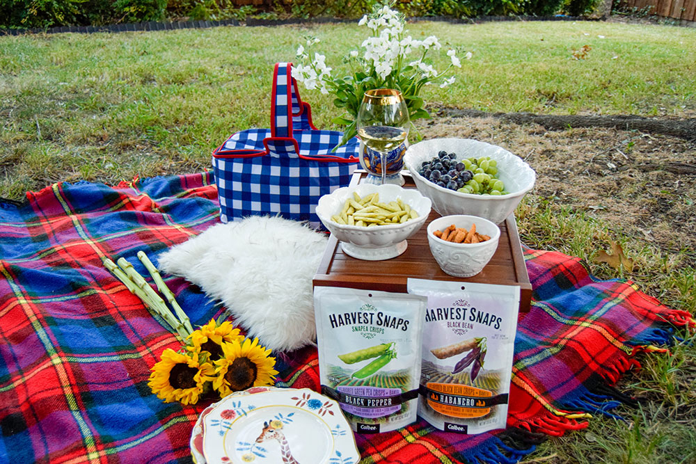 vandi-fair-dallas-fashion-blog-lauren-vandiver-southern-texas-lifestyle-fitness-blogger-healthy-snacking-snacks-harvest-snaps-snap-pea-crisps-picnic-6