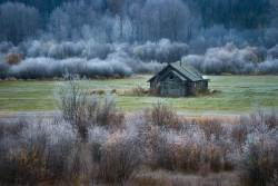 Forgotten Homestead Topley, British Columbia, Canada